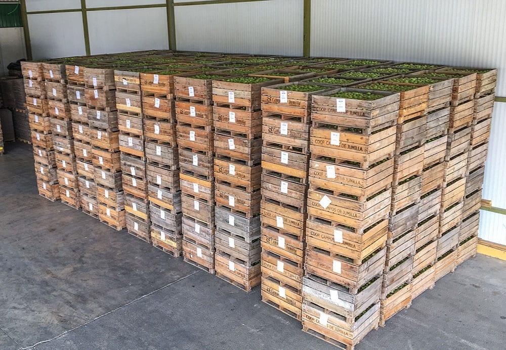Paletizado de cajas completas en Campos de Jumilla