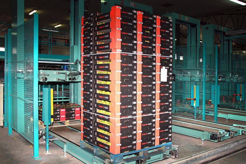 Palletising of full boxes at Campos de Jumilla